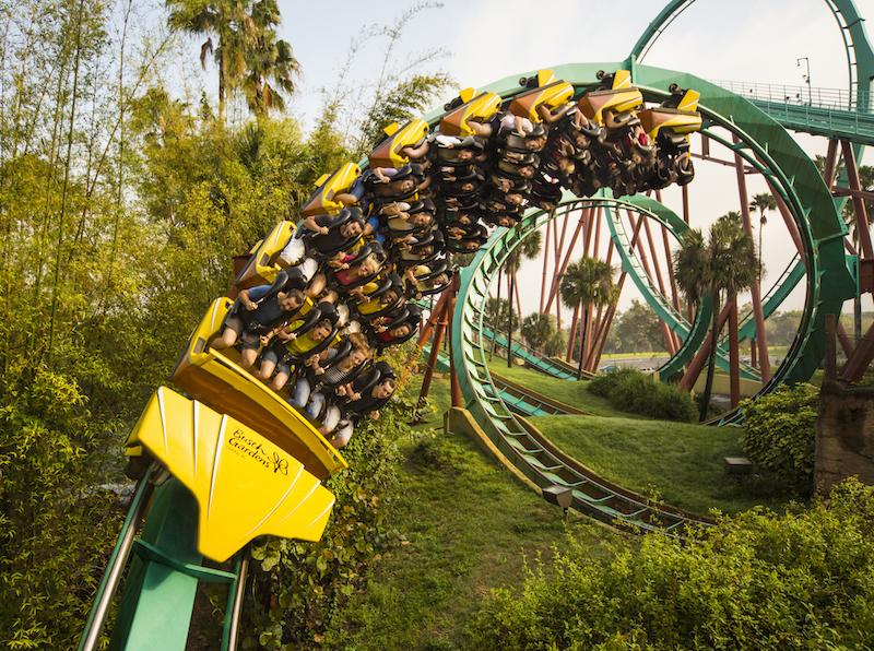 File: Busch Gardens Kumba